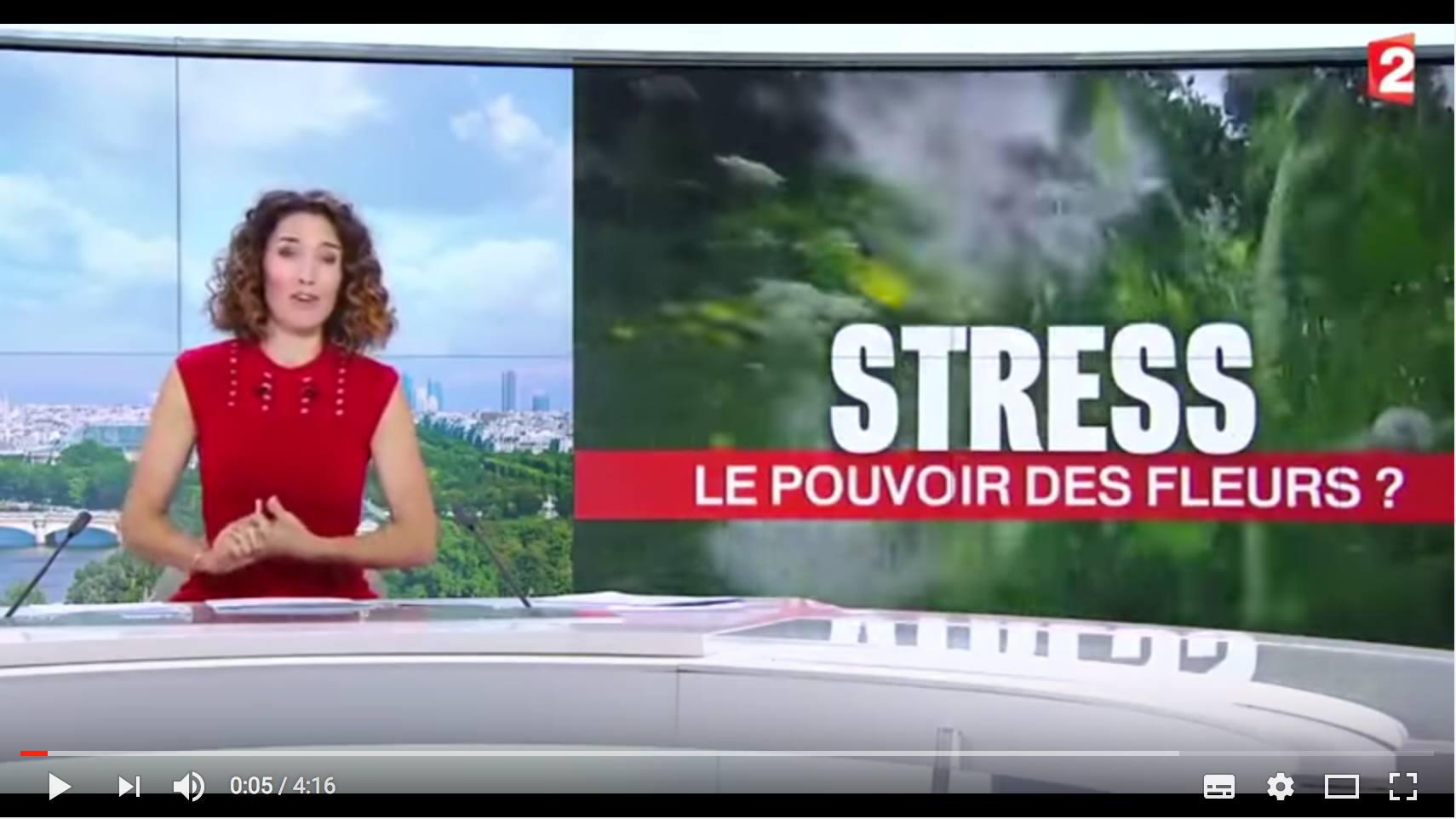 Le pouvoir des fleurs : journal télévisé de France 2