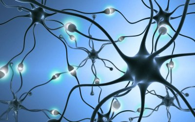 Soucis, obsessions, pulsions, anxiété et mauvaises habitudes : comment s'en débarrasser grâce à la neuroplasticité
