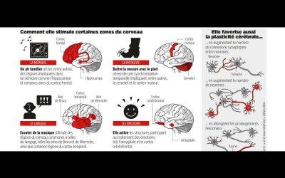 Alzheimer, AVC, dépression, …. La musique peut-elle remplacer les médicaments