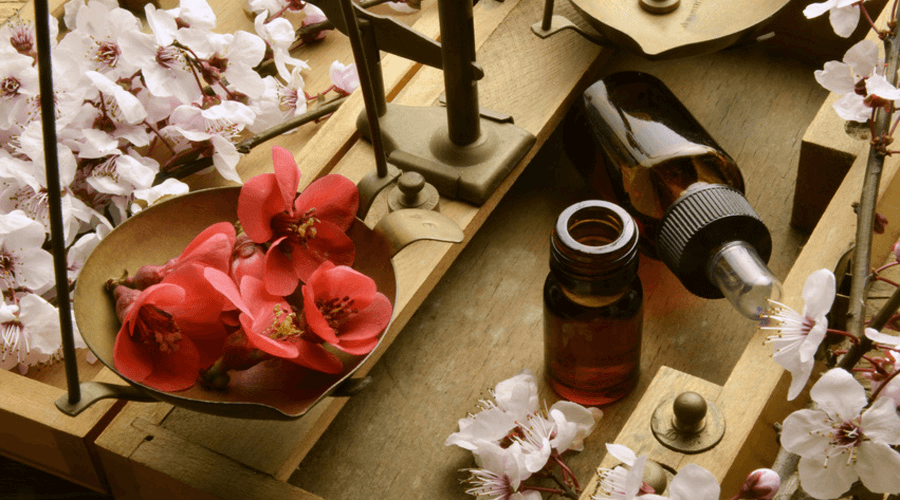 3 fleurs de Bach pour un départ en vacances sans stress