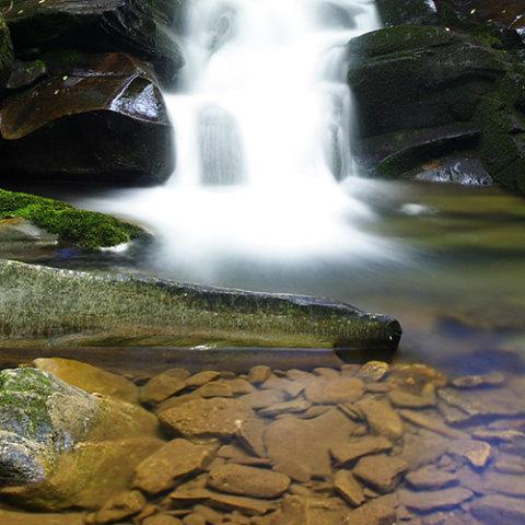 Eau de Roche – Rock Water